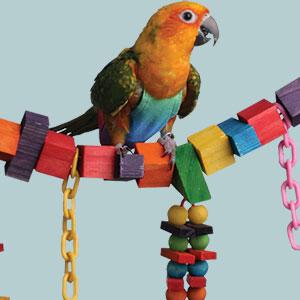 Make Your Bird's Toys Last Longer