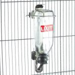 Lixit Bird Deluxe Glass Water Bottle
